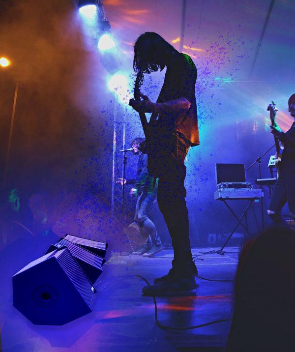 Floor Monitors 10-2-FM-16 at a concert