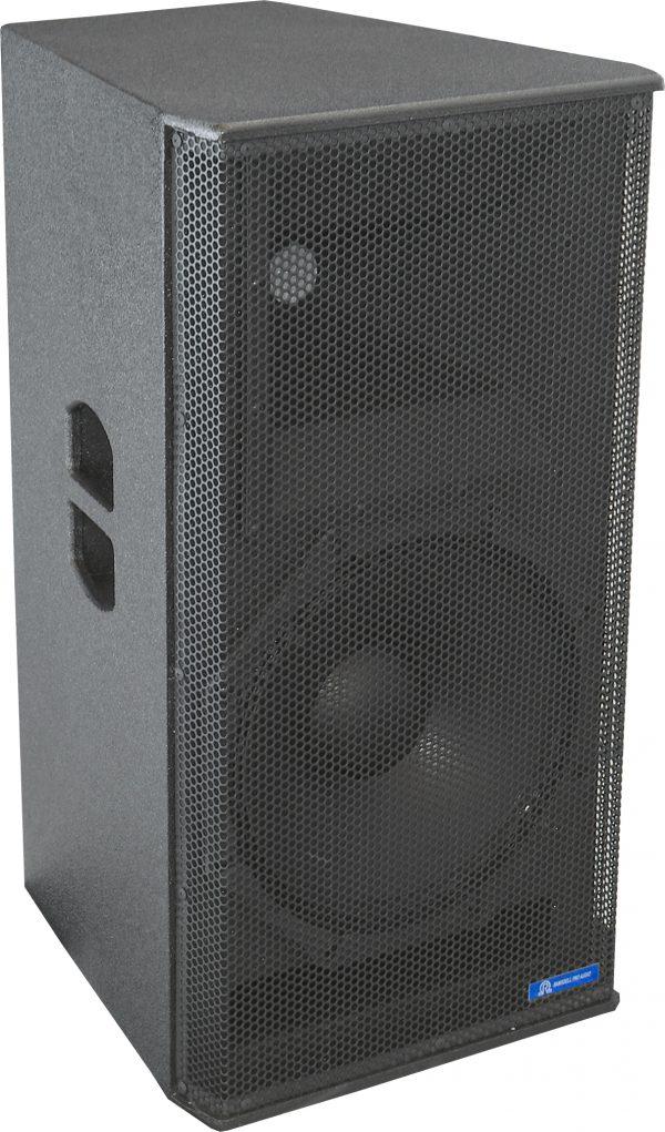 "15-X-SS Champion 15"" 2-Way Speaker"